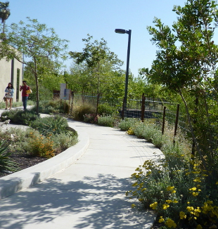 Pathway with art and interpretive elements