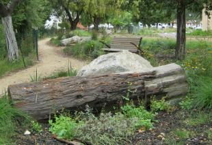 Upland habitat feature & site furnishings